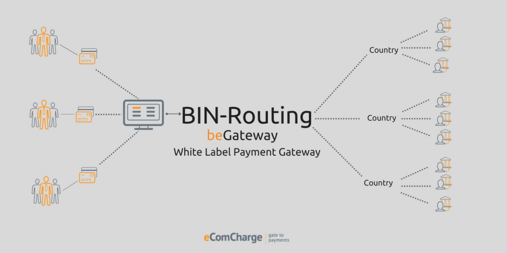 BIN-routing as a functionality for white label payment gateway